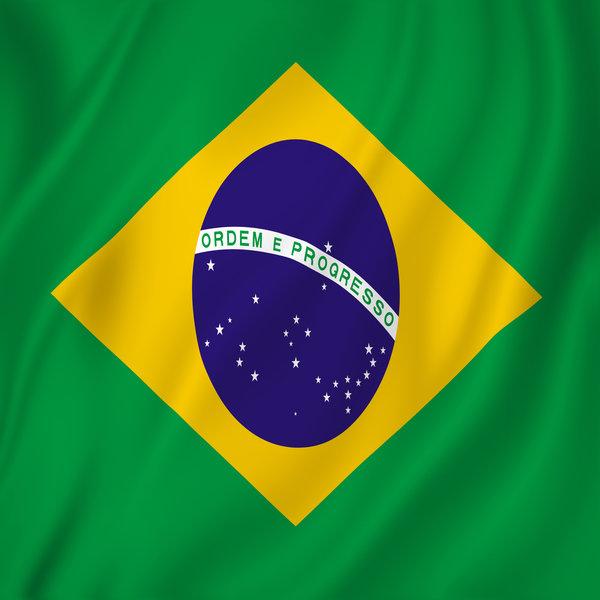 【ブラジル編】越境EC・海外販売でブラジルに売るために知っておくべきこと